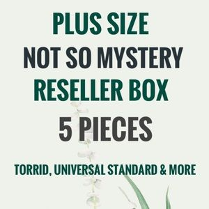 Plus Size Not So Mystery 5 Piece Reseller Box